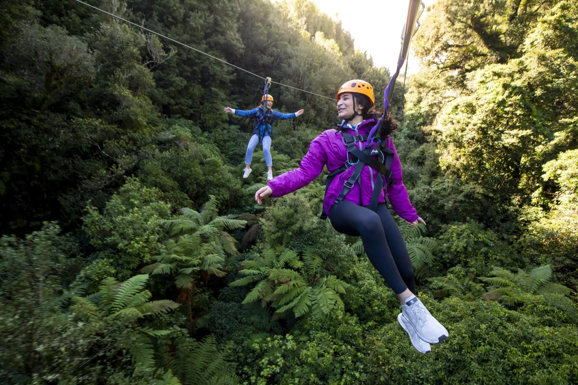 canopy tours primary