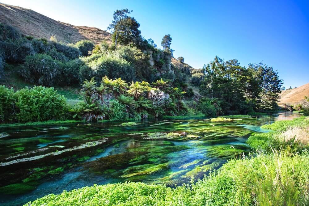 hamurana springs waters